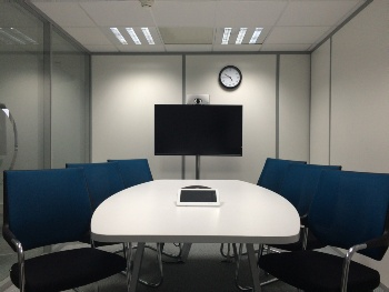 Office Partition - Opaque Glass Door Divider